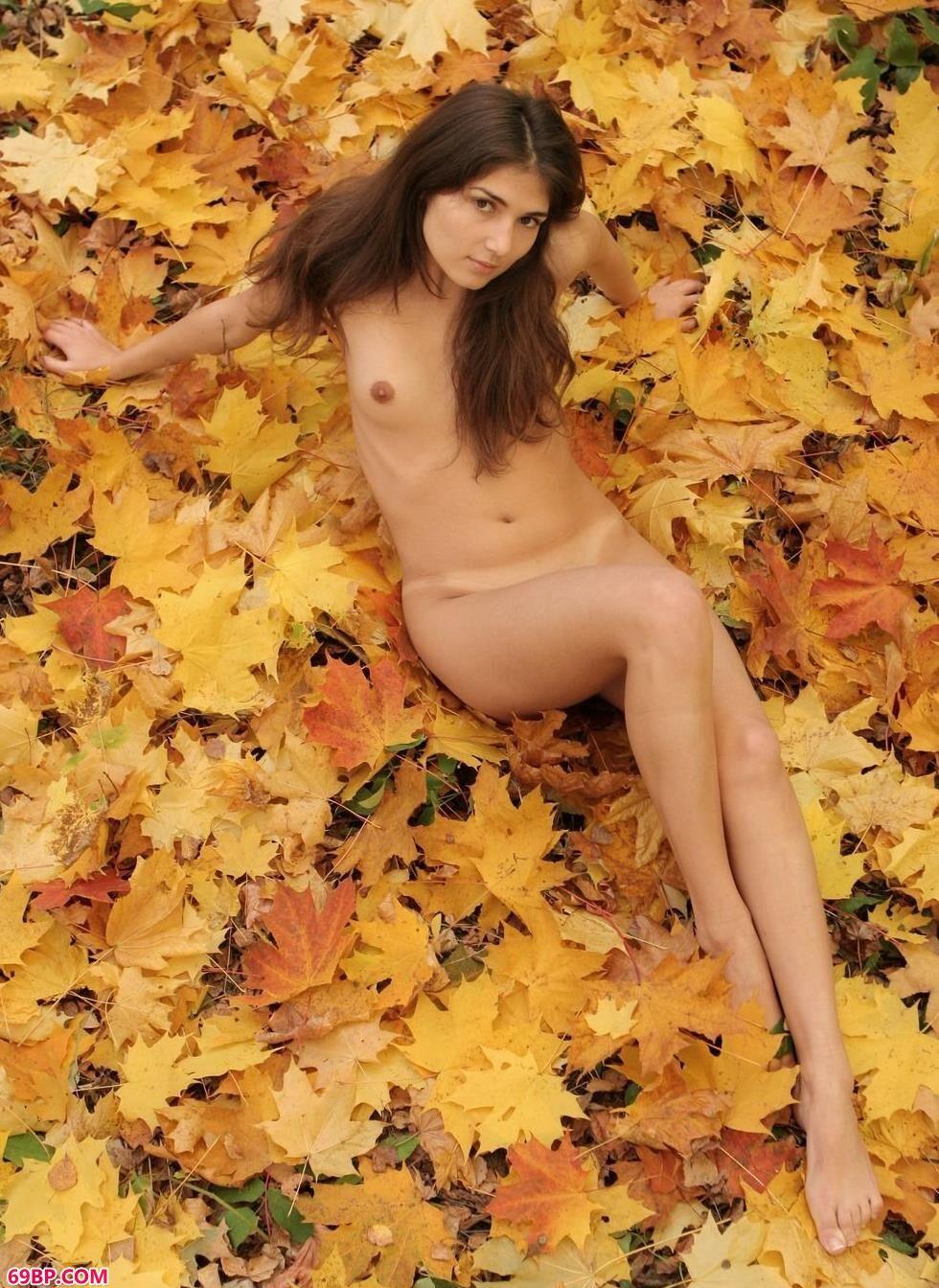 中国人体棚拍_美模Elvira枫叶堆上的美丽人体